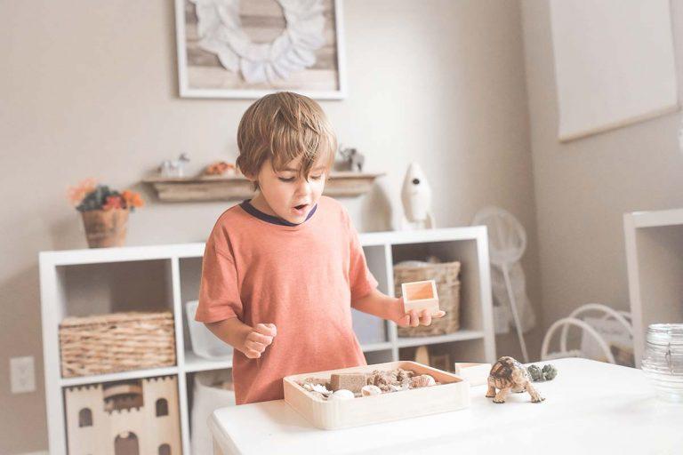giocattoli eco sostenibili