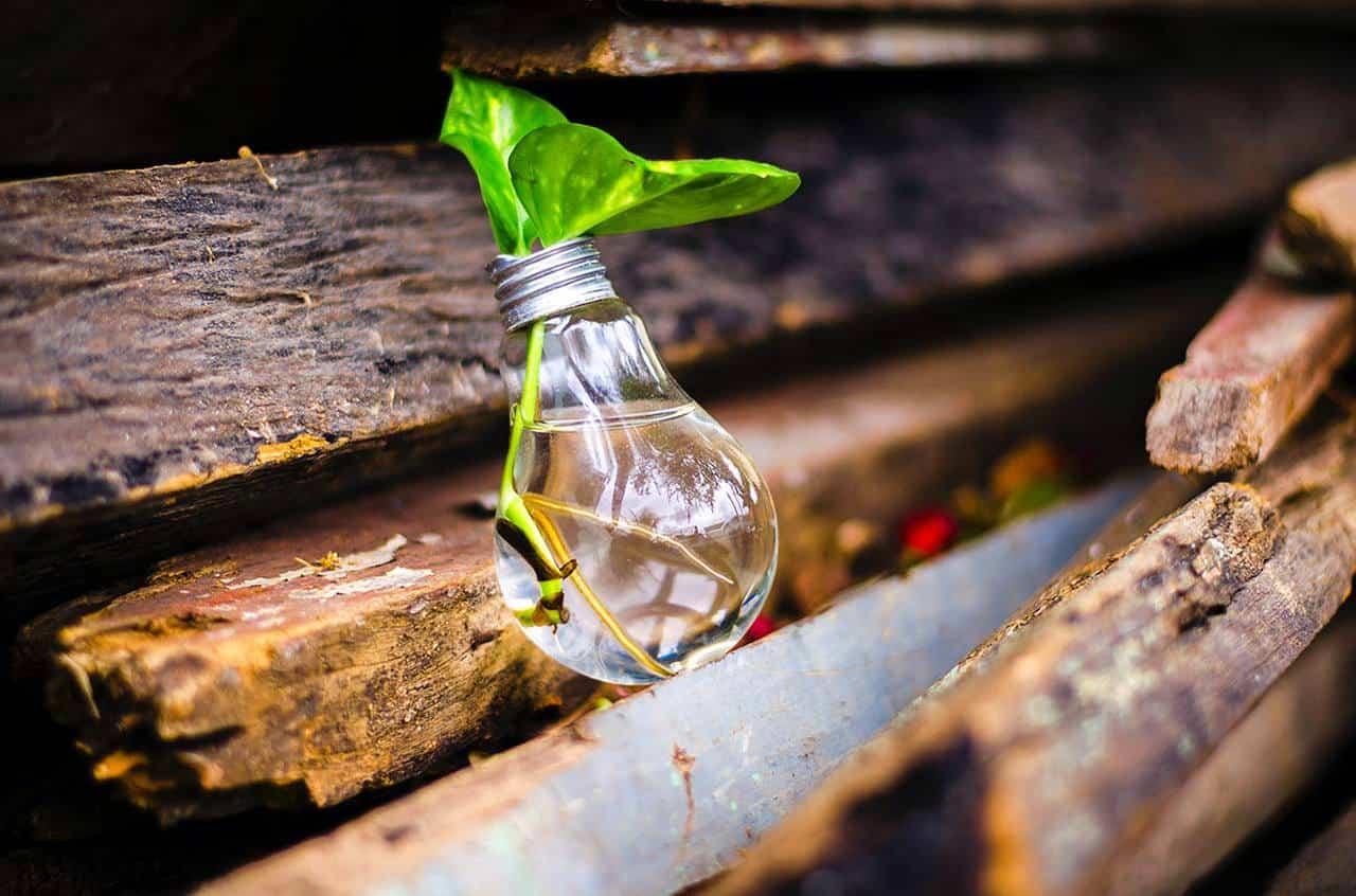 La convenienza delle lampadine a risparmio energetico