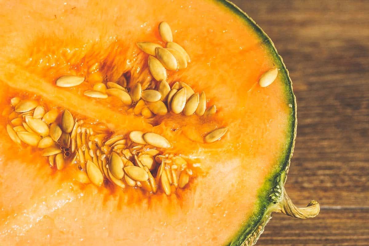 Melone: scheda tecnica di coltivazione