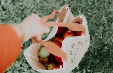 no sacchetti di plastica - si borse di stoffa riciclabili